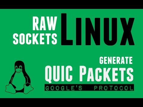 Linux raw Sockets - Generate Google