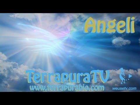 Angeli - Vivere nella serenità con l'aiuto degli angeli (angel life coach)