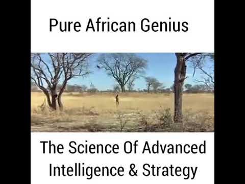 Africa - the old scientific discovery