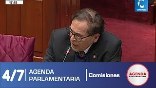 Sesión Comisión de Constitución 4/7 (25/06/19)