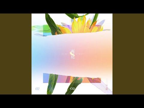 Free Download Don't Want A Drive (instrumental) Mp3 dan Mp4