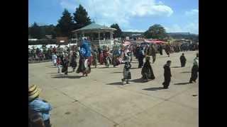 Carnaval Palo Bendito,Veracruz (llegando al centro) (1)