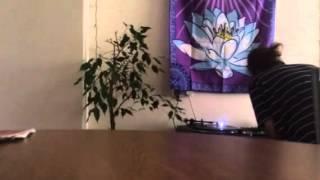 Maissouille - Sonik Boom 07 vs. Guigoo - BBMalsain (CosmicD