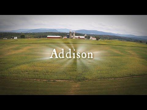Addison | More Love | H-Team