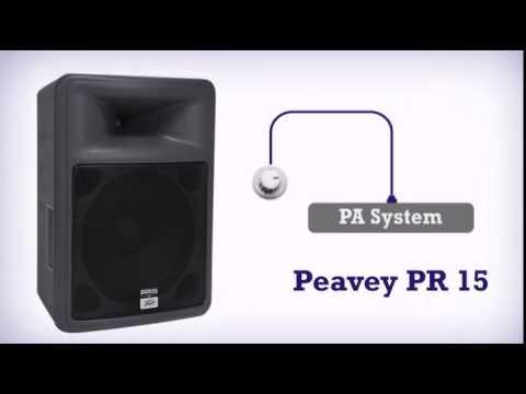 pair of peavey pr15 pr 15\