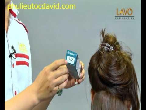 Hướng dẫn nhuộm tóc màu trên cấp độ 6