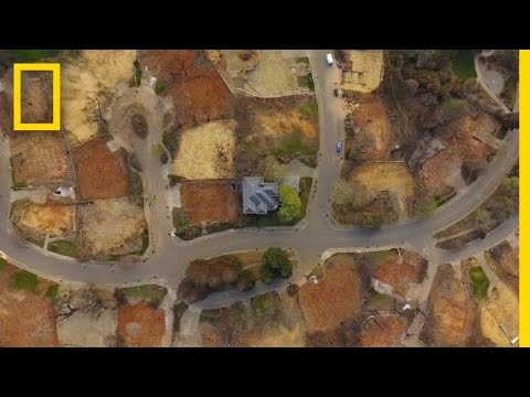 His House Survived a Devastating Wildfire. Now, It's an Island in the Ashes | Short Film Showcase Mp3