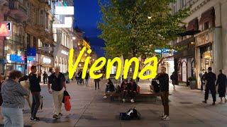 오스트리아 빈에서 오페라 공연을 무료로 관람하다!