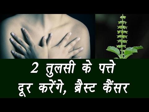 Fight Breast Cancer with Tulsi leaves | 2 तुलसी के पत्ते, दूर करेंगे ब्रैस्ट कैंसर | Boldsky