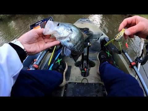 Crappie Fishing with a Hollow Body FROG 🐸