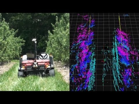 3D Lidar Row Following in Orchards