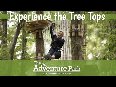 Zip Line Virginia What Is An Adventure Park