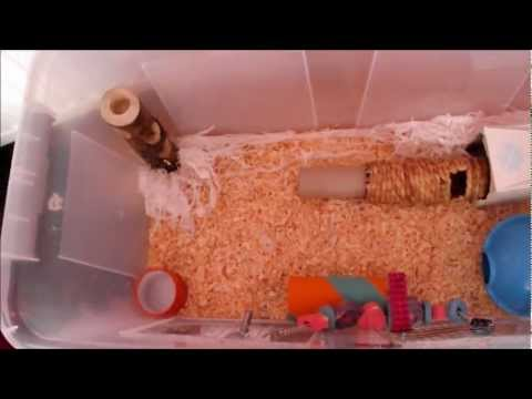 Tutorial how to clean a hamster bin cage thoroughly for Hamster bin cage tutorial