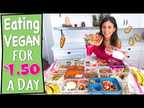 EATING VEGAN FOR $1.50 A DAY | MEAL PREP FOR THE WEEK (EASY+DELICOUS)