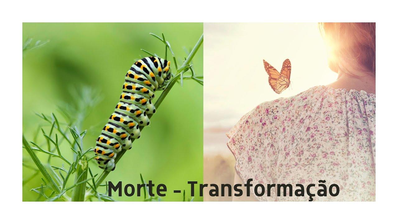 Morte  - Transformação