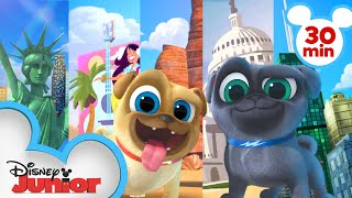Bingo and Rolly Travel Across America 🌎 | 30 Minute Compilation | Puppy Dog Pals | Disney Junior