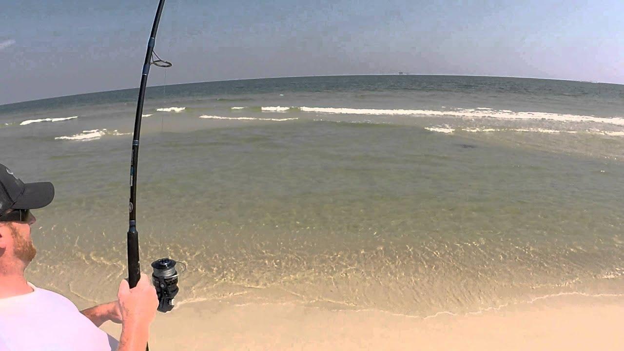 Gulf shores shark fishing success youtube for Fishing gulf shores