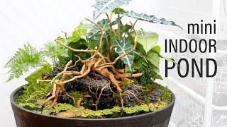 INCREDIBLE Mini Indoor DIY Pond (Patio Pond)