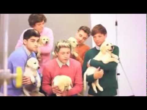 One Direction and puppies- Wonderland Behind the Scenes of the Cover (Full)