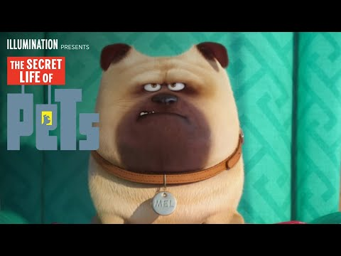 The Secret Life of Pets - Meet Mel (HD) - Illumination
