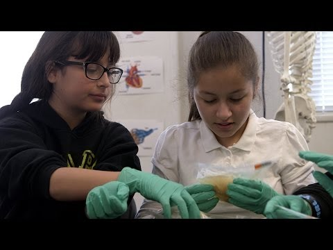 Stanford students visit local schools for annual Brain Day