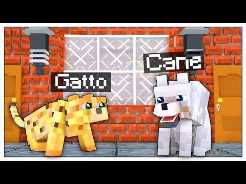CANE E GATTO SCAPPANO DI CASA! VITA DA ANIMALI! - Minecraft ITA thumbnail