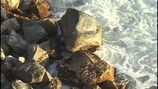 Ocean Waves Crash on Rocks in Hawaii