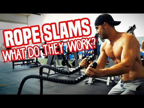 Battle Rope Muscle BREAKDOWN (Which Exercise Does What)