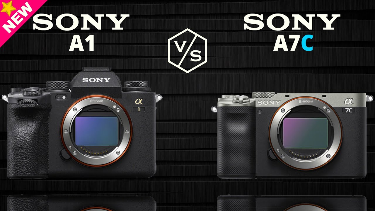 SONY Alpha A1 vs SONY Alpha A7C