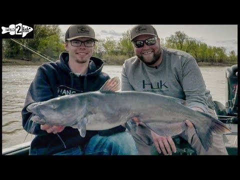 How To Catch BIG Channel Catfish In The Red River