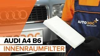 Wartung Audi TT 8N Video-Tutorial