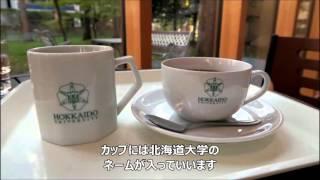 説明 2015年10月23日(金)、北大イチョウ並木道を訪れた時立ち...