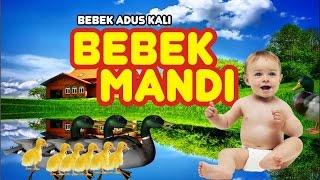 Bebek Adus Kali - lagu anak - Totom - Stafaband
