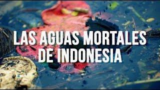 Las aguas mortales de Indonesia – Documental de RT