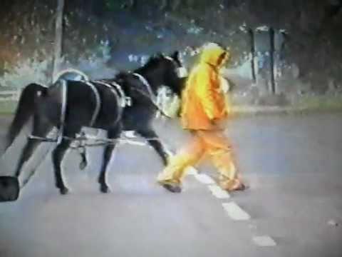 gypsies horse trotting race 1986