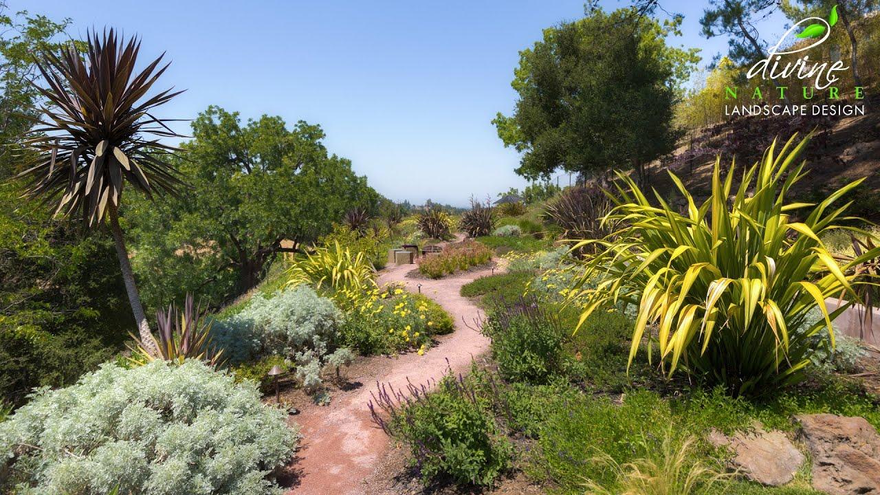 Landscape Design 42 Hillside Restoration By Divine