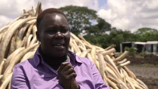 Interview with Winnie Kiiru on the Kenya Ivory Burn