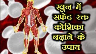 खून में सफ़ेद रक्त कोशिका बढ़ाने के उपाय || White Blood Cells Count || Health Tips Hindi