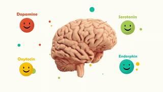 endorfiner og dopamin