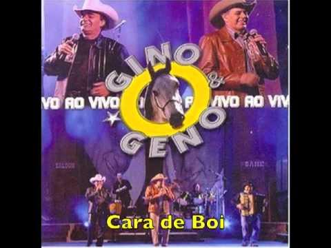 BAIXAR E BOI CARA GENO GINO MUSICA DE