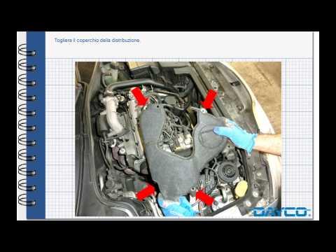 vw 1600 engine diagram montaggio kit distribuzione renault laguna 1 9 dci  montaggio kit distribuzione renault laguna 1 9 dci