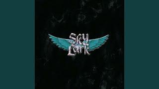 Provided to YouTube by Believe SAS Summer of 2001 · Skylark Skylark...