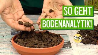 Einfache Bodenanalyse   Der GrГјne Tipp