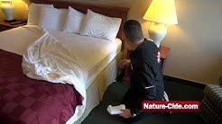 How to Kill and Prevent Getting Bed Bugs from Hotels While Traveling | Nature-Cide