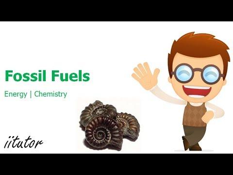 √ Origins of Fossil Fuels | Energy | iitutor