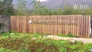170223 Dujiangyan Panda Base Tour
