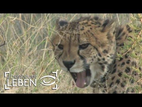 Wie viel Deutschland steckt in Namibia (1/3) | Abenteuer Leben
