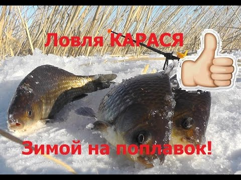 Как ловить карася зимой на удочку (На поплавок)