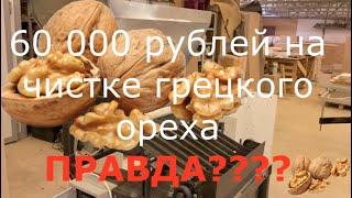 Новая бизнес идея по переработке Грецкого ореха: рассчет, окупаемость, оборудование! cмотреть видео онлайн бесплатно в высоком качестве - HDVIDEO