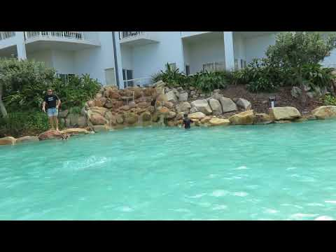 Peppers kingscliff pool